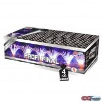 profi-final - 2999