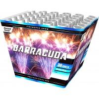 barracuda - 6145